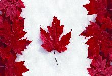 Kanada Üviversiteleri