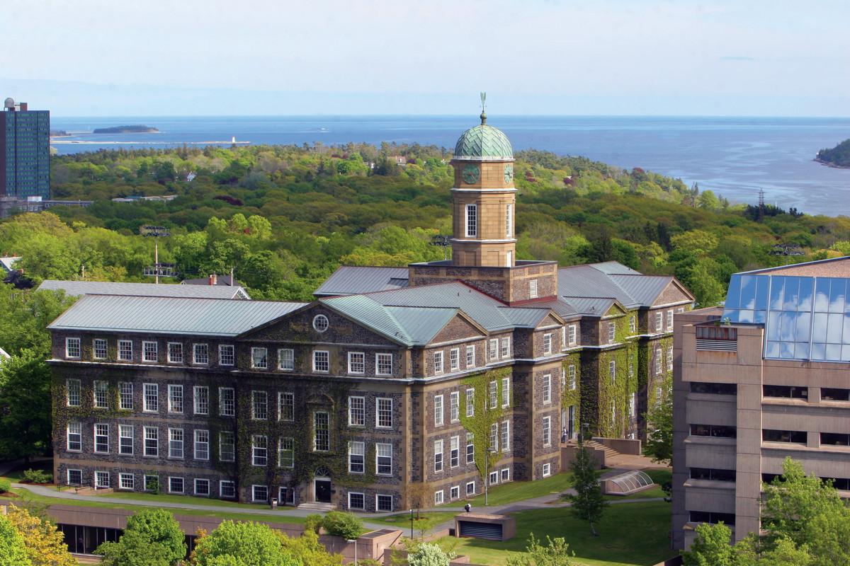 Dolhouse Üniversitesi